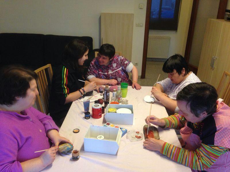 Joves voluntaris del Pis Vilanova Persona i Valors a l'Associació Alba